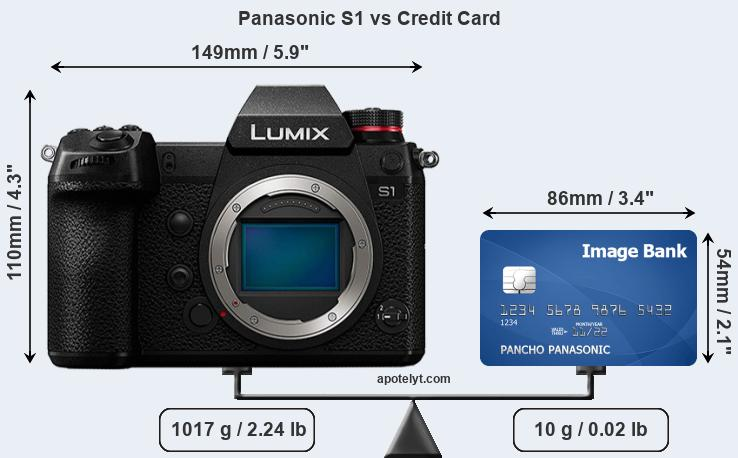 Panasonic S1 vs credit card front