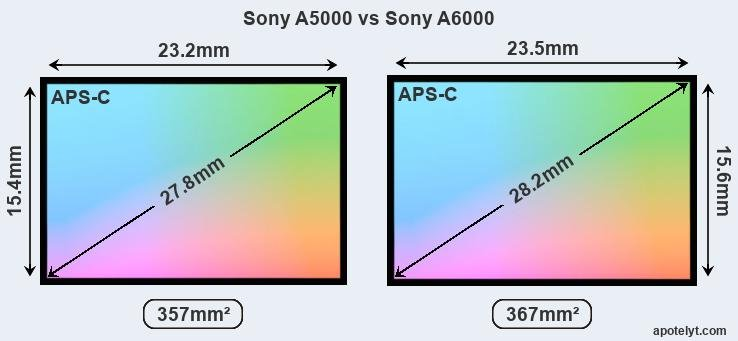 Sony A5000 vs Sony A6000 Comparison Review