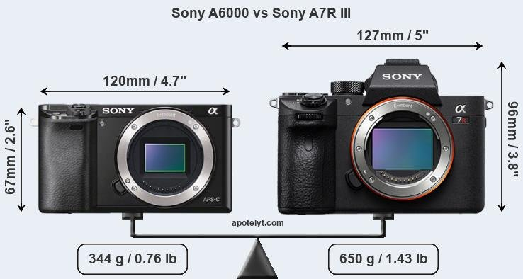 Sony A6000 and Sony A7R III sensor measures