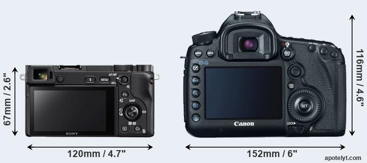 A6300 and 5D Mark III rear side