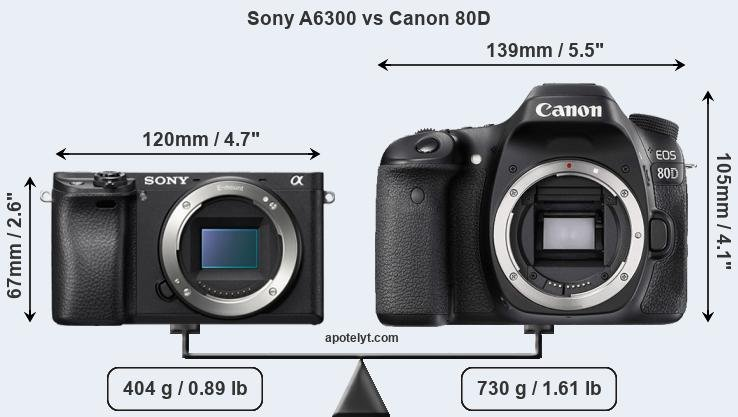 Sony A6300 and Canon 80D sensor measures