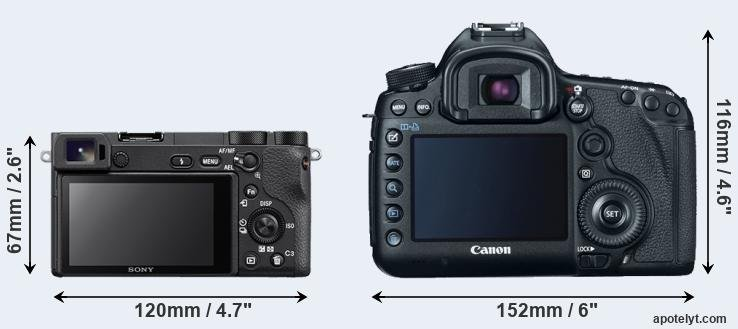 A6500 and 5D Mark III rear side