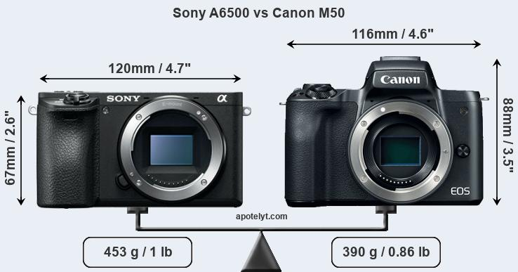 Kindle Vs Sony Reader: Sony A6500 Vs Canon M50 Comparison Review