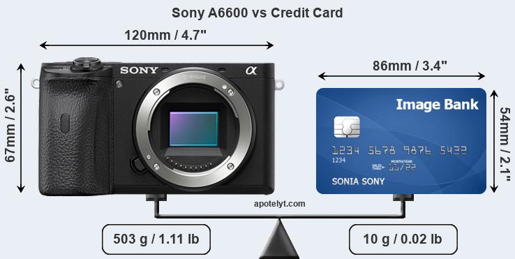 Sony A6600 vs credit card front