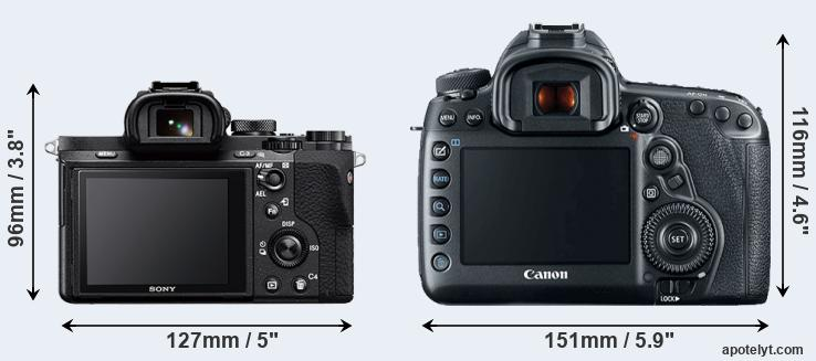 A7 II and 5D Mark IV rear side