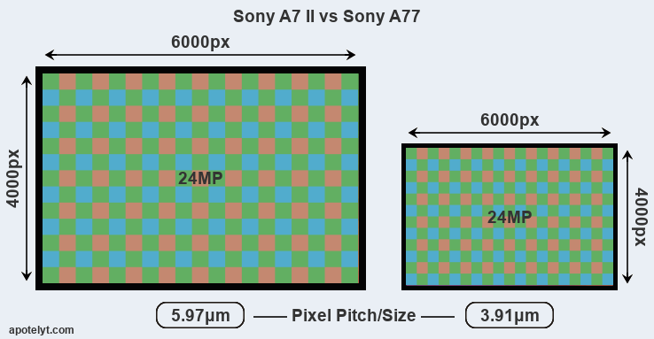 A7 II versus A77 MP