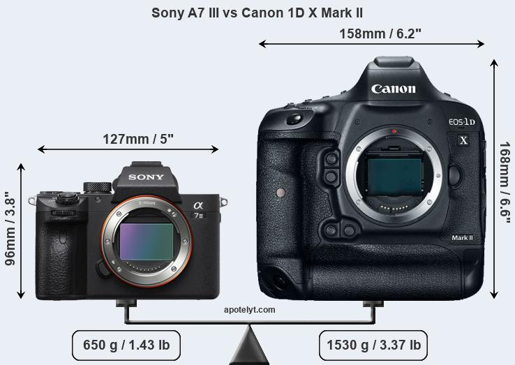 Kindle Vs Sony Reader: Sony A7 III Vs Canon 1D X Mark II Comparison Review