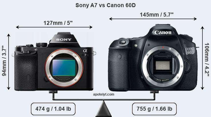 Sony A7 vs Canon 60D Comparison Review