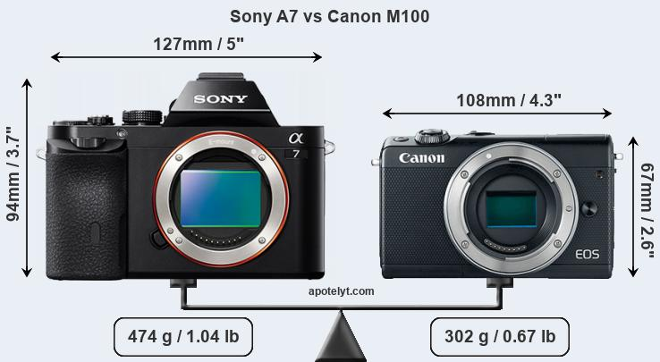 Compare Sony A7 and Canon M100