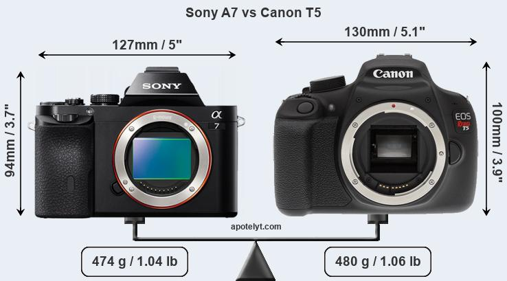 Compare Sony A7 and Canon T5