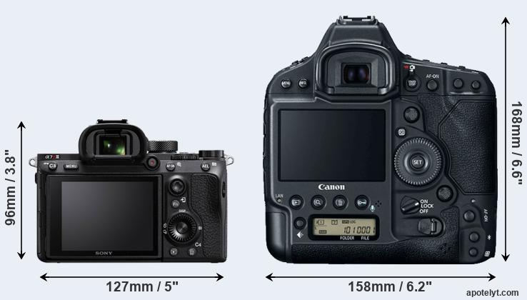 A7R III and 1DX Mark II rear side