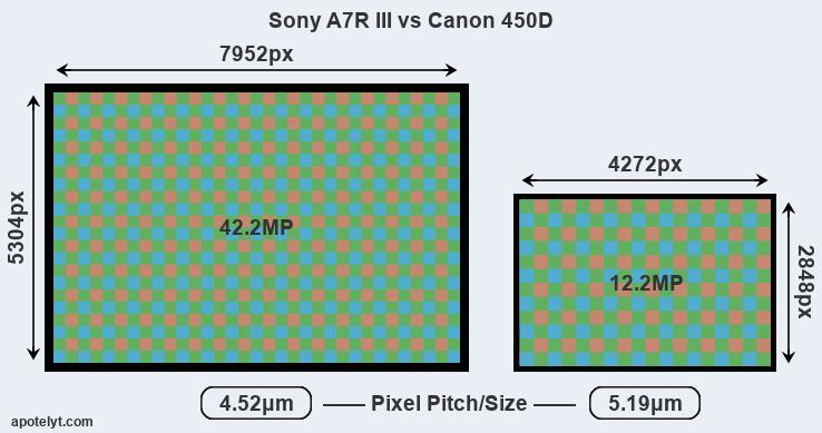 Sony A7R III vs Canon 450D Comparison Review