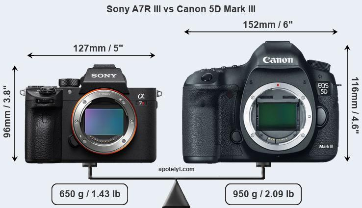 Sony A7R III vs Canon 5D Mark III front