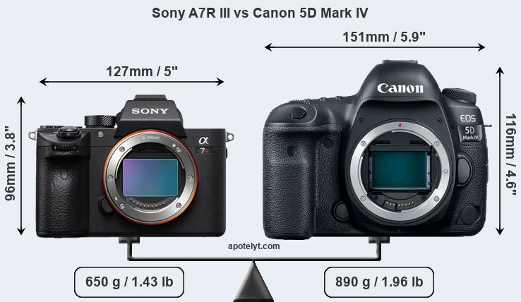Sony A7R III vs Canon 5D Mark IV front