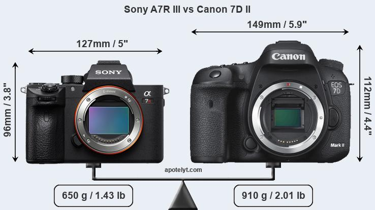 Sony A7R III and Canon 7D II sensor measures