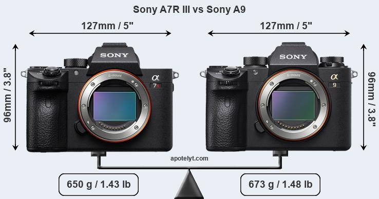 Compare Sony A7R III vs Sony A9