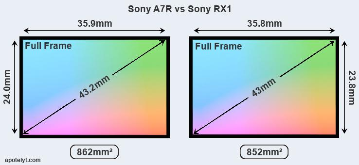 Sony A7R and Sony RX1 sensor measures