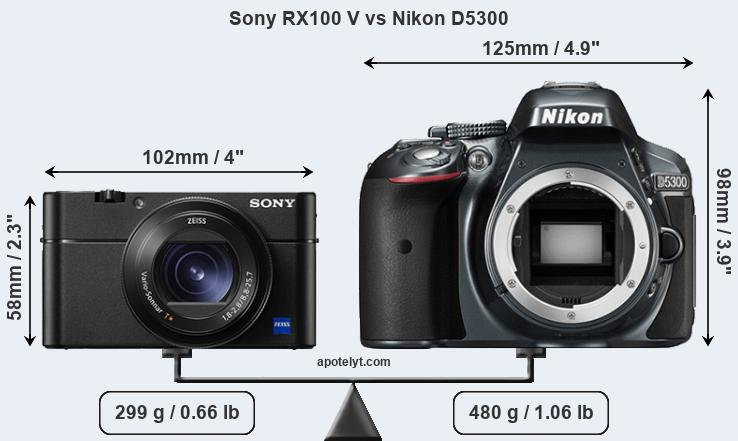 Sony RX100 V and Nikon D5300 sensor measures